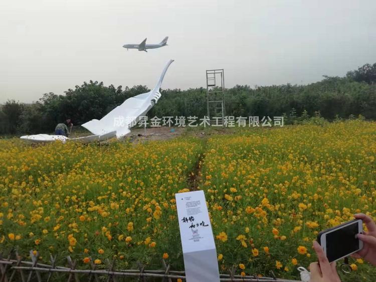 双流空港花田羽毛BOB直播官网app 完美呈现